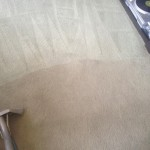 Carpet-Cleaning-Menlo Park