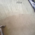 Menlo Park-Carpet-Cleaning-Company