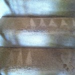 Menlo Park-Stairs-Carpet-Cleaning