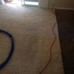 Menlo Park-Traffic-Area-carpet-cleaners