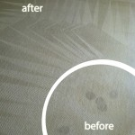 Menlo Park-Wine-Stain-Carpet-Cleaning