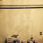Menlo Park-mold-damage