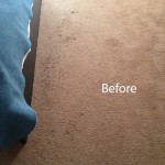 ink stain removal Menlo Park-A