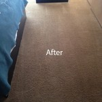 ink stain removal Menlo Park-B